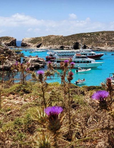 Boats infront of the shore of Malta