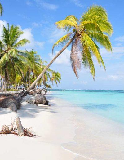 San Blas Islands — Quetzal Motivo