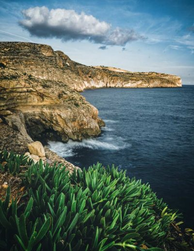 Rocky coast of Malta with plants