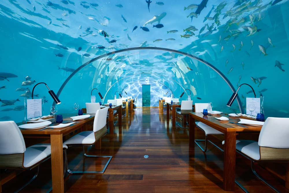 Eating dinner under the water
