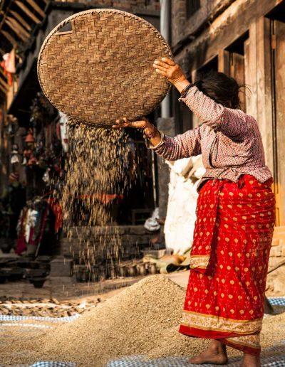 Bhaktapur Harvesting — Nepal, Hi Tours